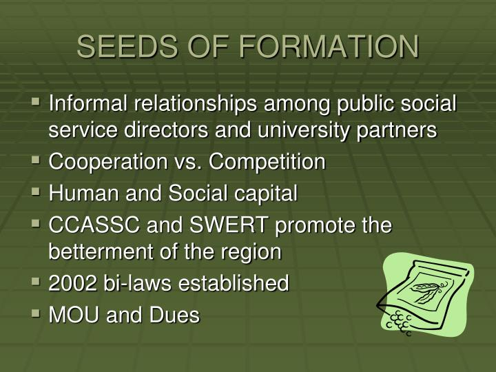 SEEDS OF FORMATION