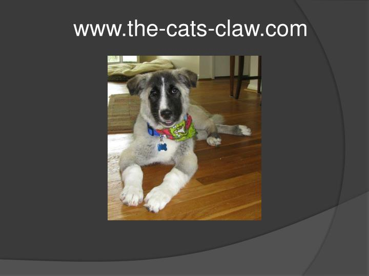 www.the-cats-claw.com