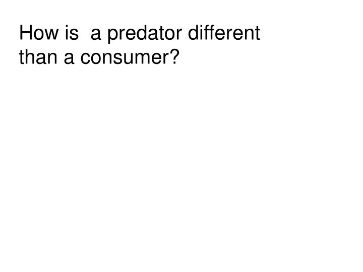 How is  a predator different than a consumer?