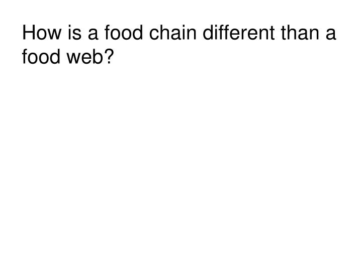 How is a food chain different than a food web?