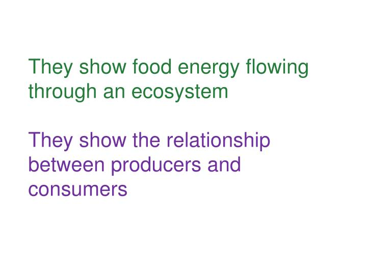 They show food energy flowing through an ecosystem
