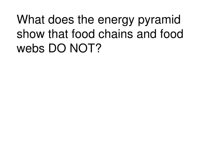 What does the energy pyramid show that food chains and food webs DO NOT?