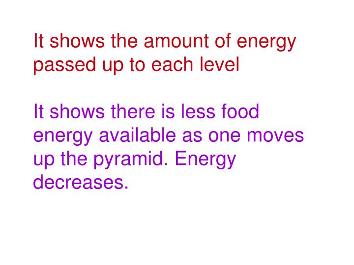 It shows the amount of energy passed up to each level