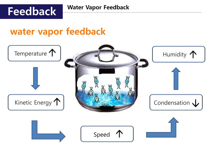 Water Vapor Feedback