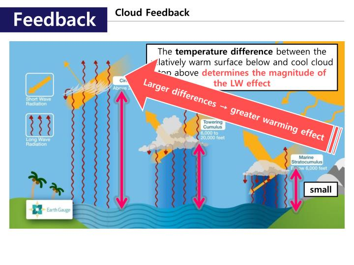 Cloud Feedback