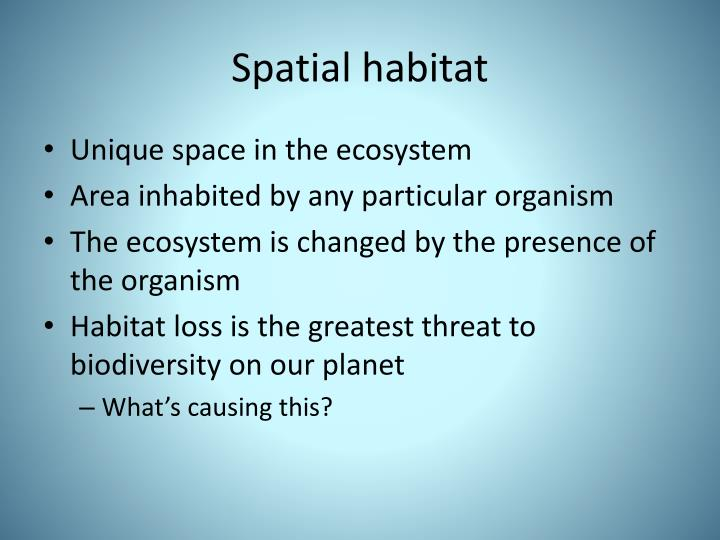 Spatial habitat