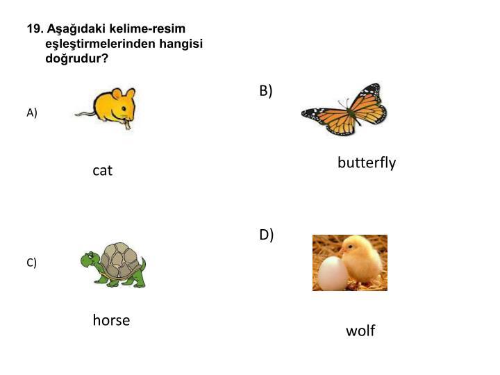 19. Aşağıdaki kelime-resim eşleştirmelerinden hangisi doğrudur?