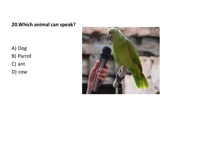 20.Which animal can speak?