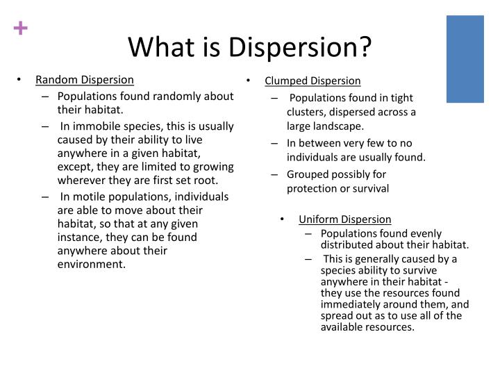 What is Dispersion?