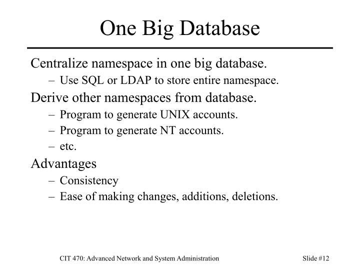 One Big Database