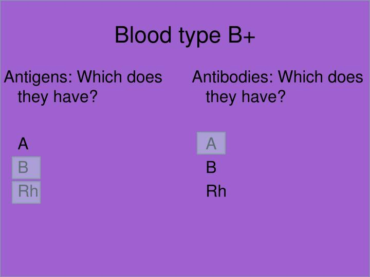Blood type B+
