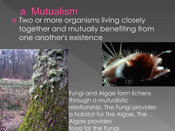 a. Mutualism