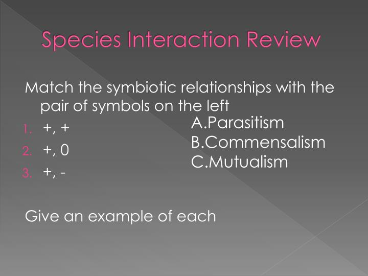 Species Interaction Review