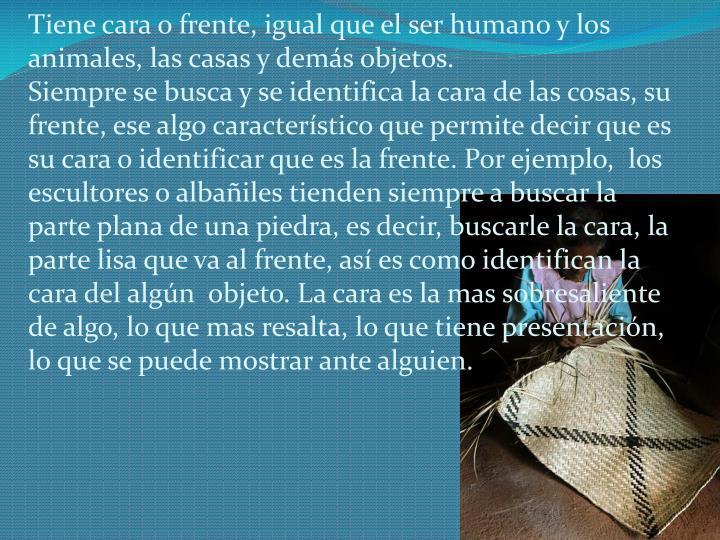 Tiene cara o frente, igual que el ser humano y los animales, las casas y demás objetos.
