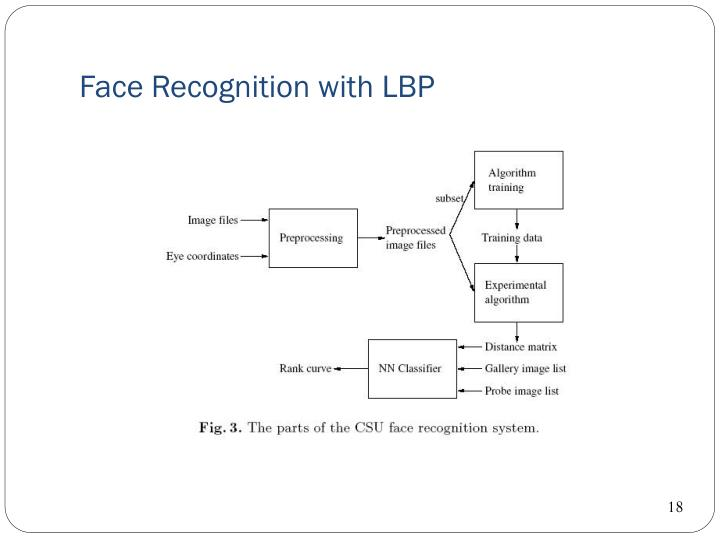 Lecture 10 ming yang - face recognition systems
