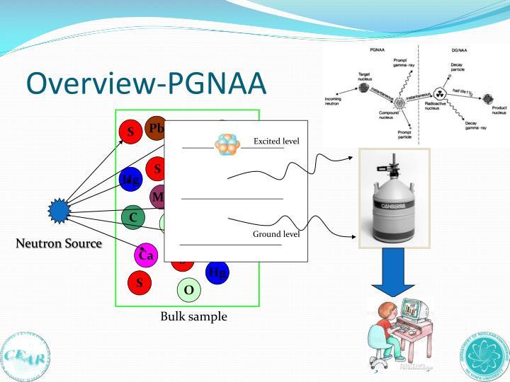 Overview-PGNAA