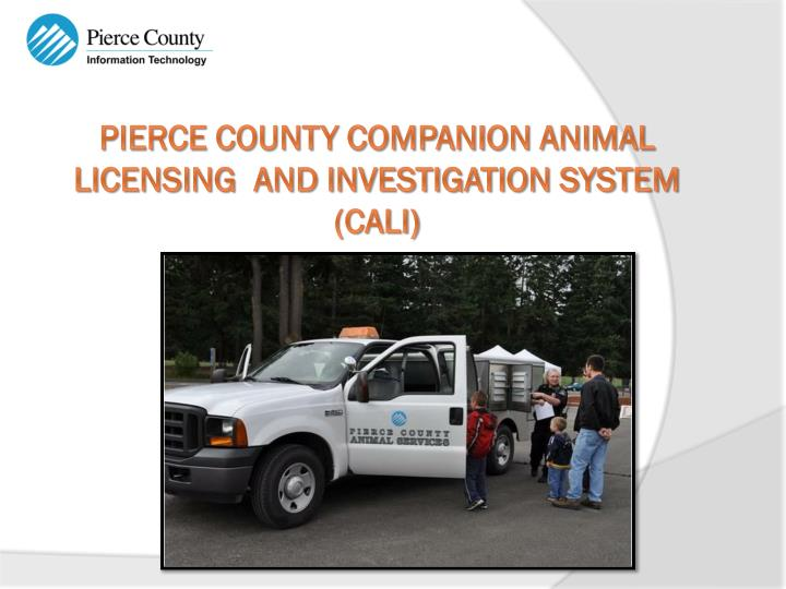 Pierce county companion animal licensing and investigation system cali