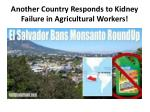 another country responds to kidney failure in agricultural workers