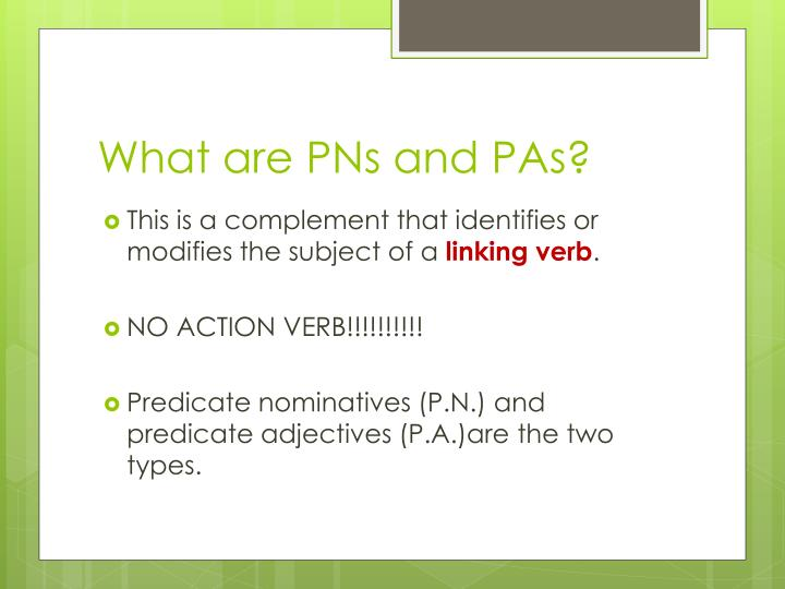What are PNs and PAs?