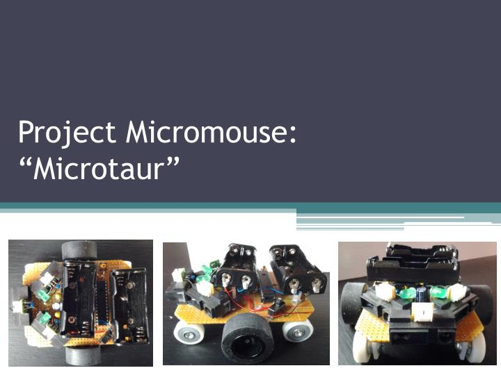 Project micromouse microtaur