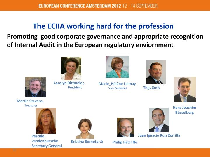 The ECIIA working hard for the profession