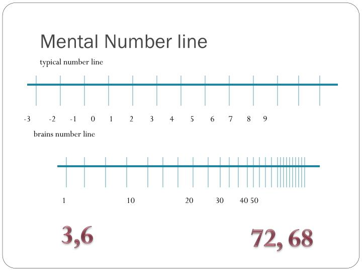 Mental Number line