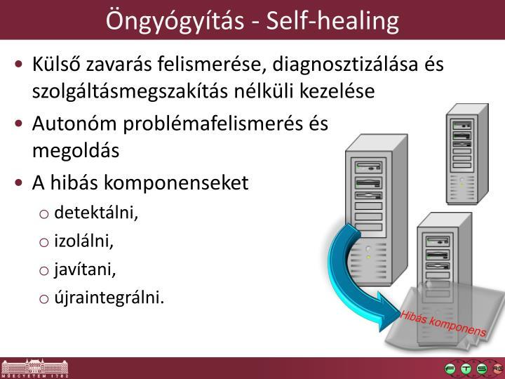 Öngyógyítás -