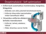 noptimaliz ci self optimization