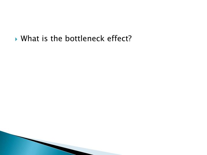 What is the bottleneck effect?
