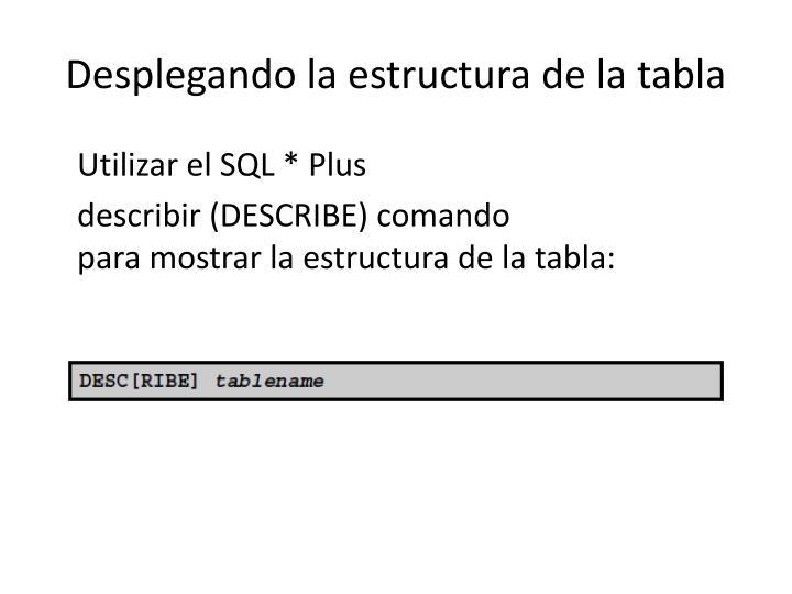 Desplegando la estructura de la tabla