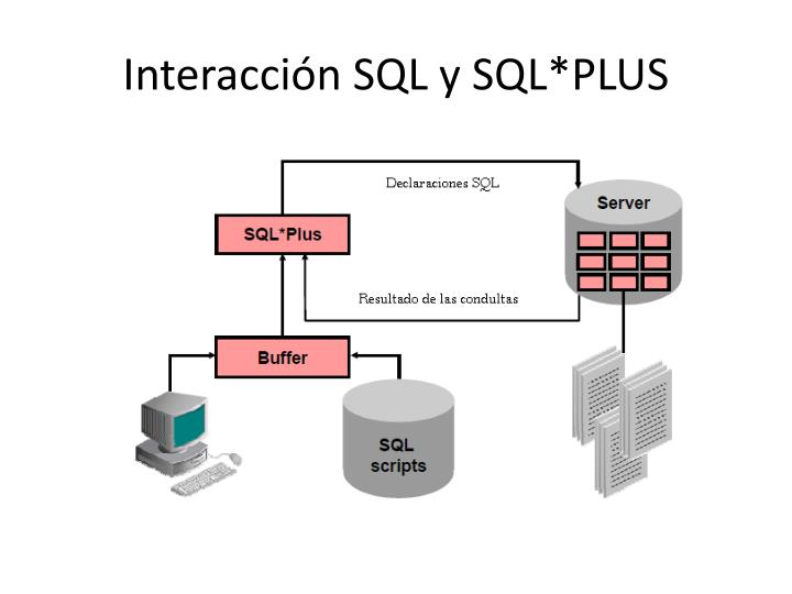 Interacción SQL y SQL*PLUS