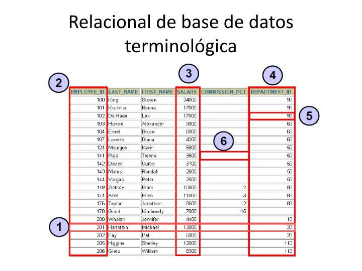 Relacional debase de datos terminológica