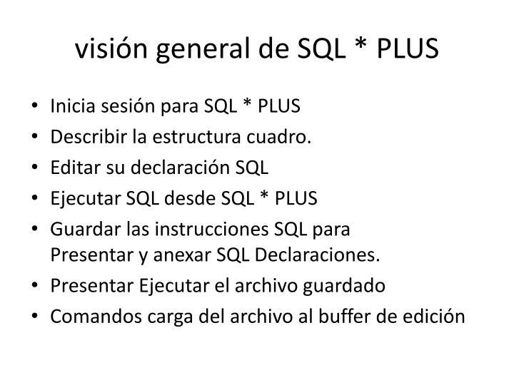 visión generaldeSQL*