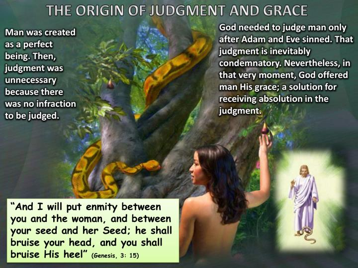 THE ORIGIN OF JUDGMENT AND GRACE