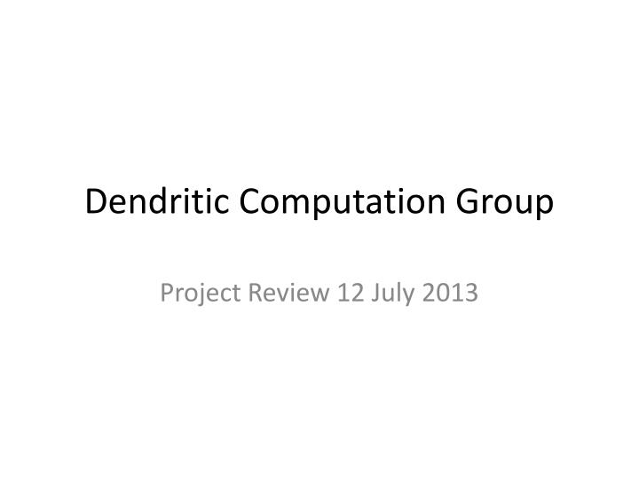 Dendritic computation group