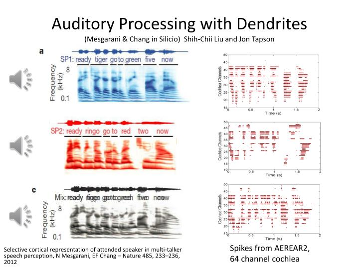 Auditory Processing with Dendrites