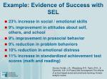 example evidence of success with sel