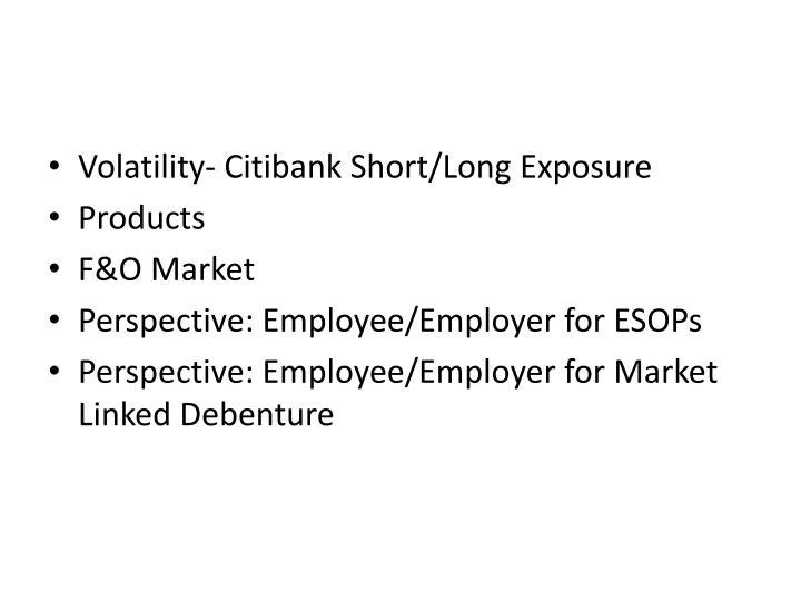 Volatility- Citibank Short/Long Exposure