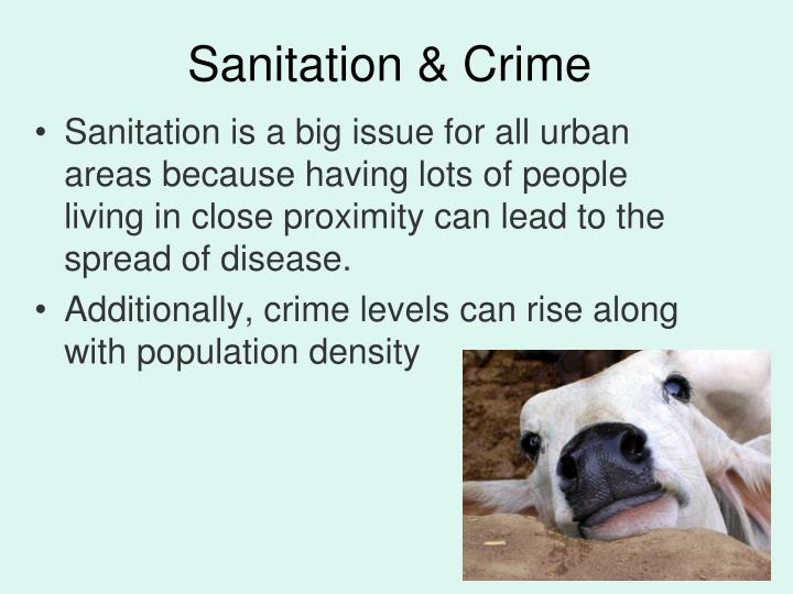 Sanitation & Crime