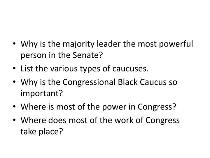 Why is the majority leader the most powerful person in the Senate?