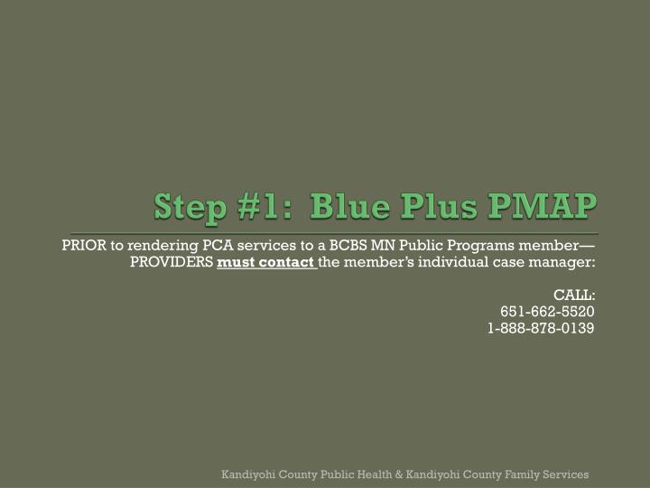 Step #1:  Blue Plus PMAP