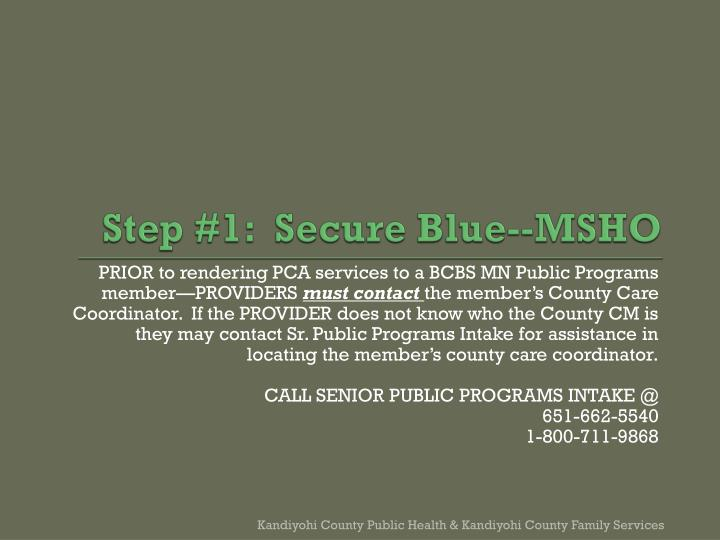 Step #1:  Secure Blue--MSHO
