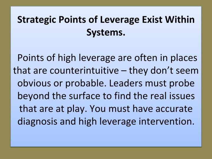 Strategic Points of Leverage Exist Within Systems