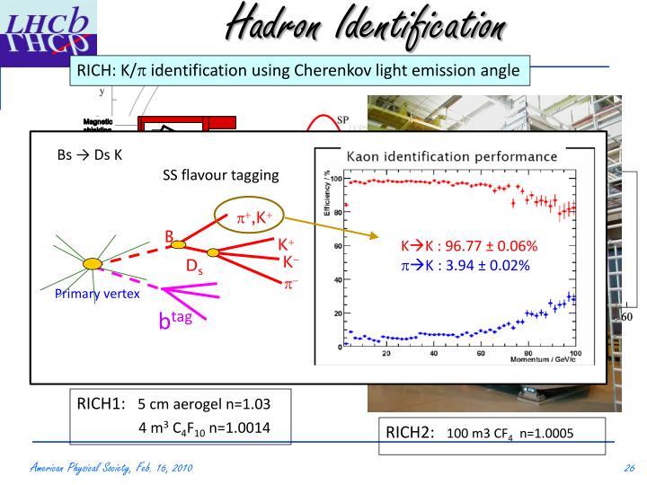 Hadron Identification