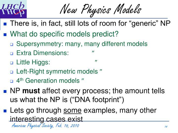 New Physics Models