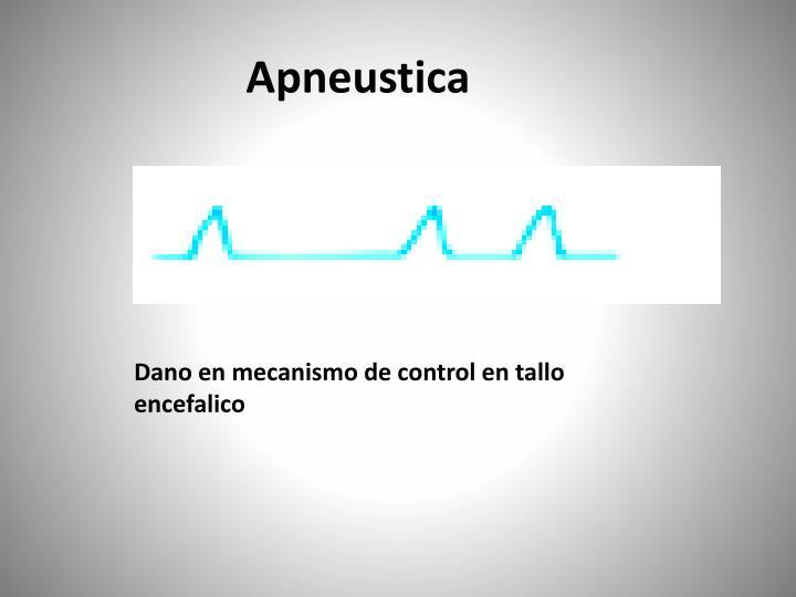 Apneustica