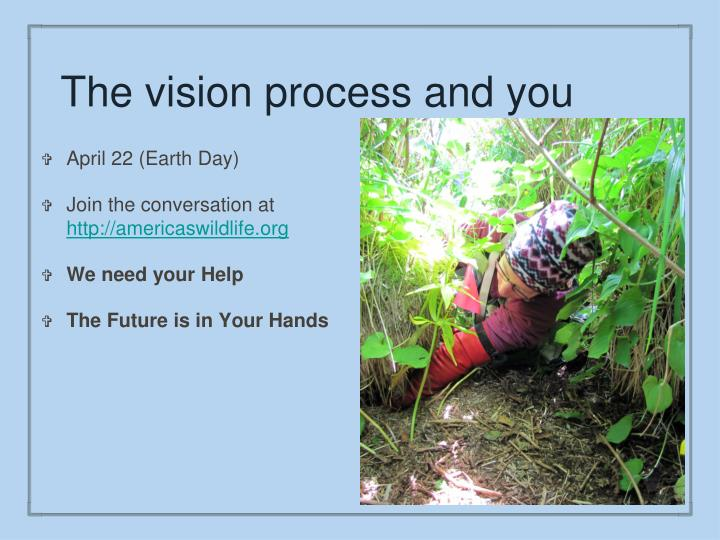 The vision process and you