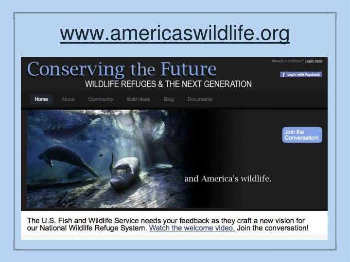 www.americaswildlife.org