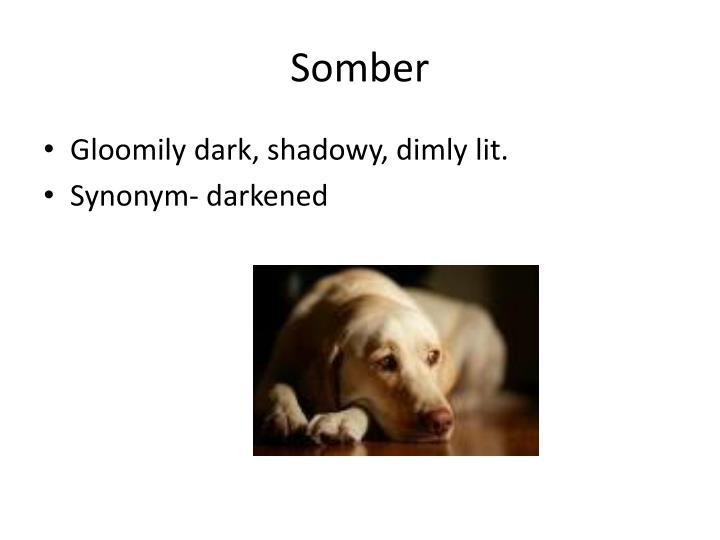 Somber