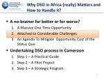 why dso in africa really matters and how to handle it1